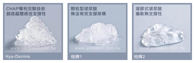 Hya-Dermis 水微晶-支撐更立體